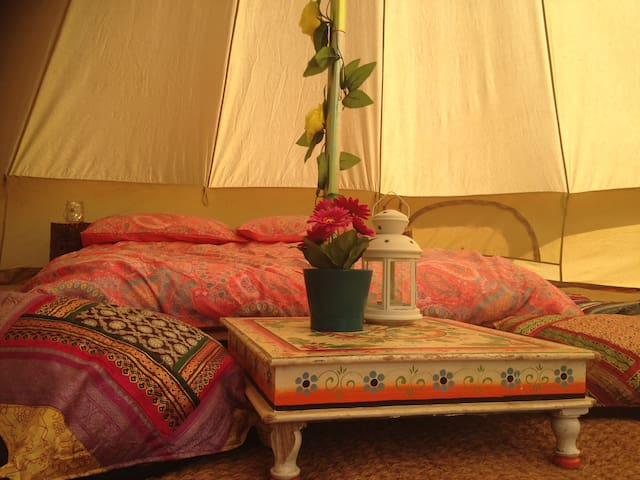 Farm life camping-simplicity.