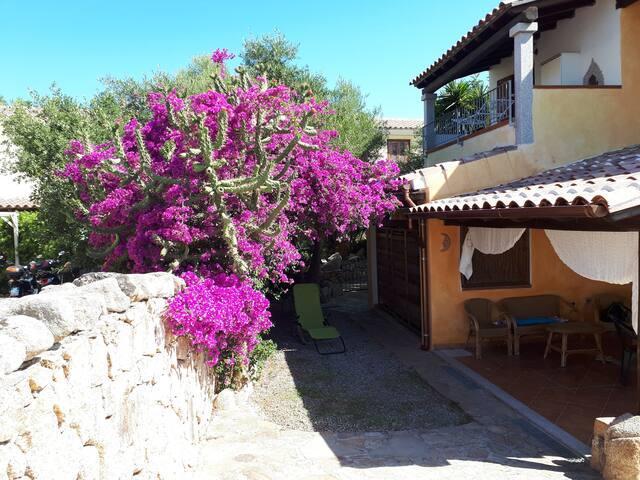 Casa Vacanze Vaccileddi, Olbia