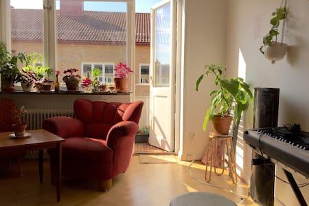 Bright and big one-room apartment! - Apartamento