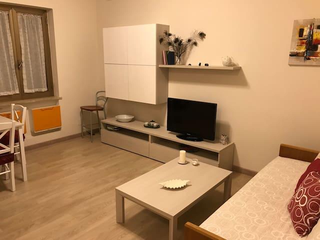 Little Modern Apartment