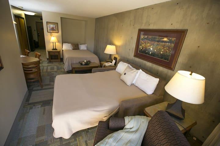 Full Murphy bed and Queen sleeper sofa