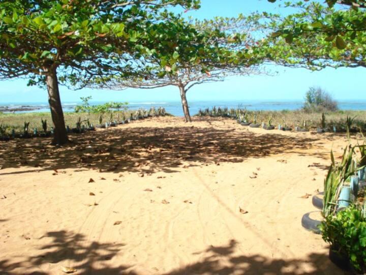 Descansar ouvindo o som das ondas e vendo a praia.