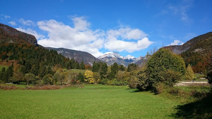 cosy rooms for 4 pers, garden view, Bohinj valley - Savica - Bed & Breakfast