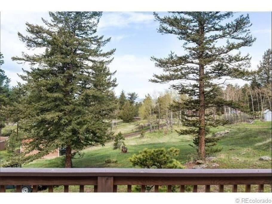 Back yard is private with views of Mount Evans.