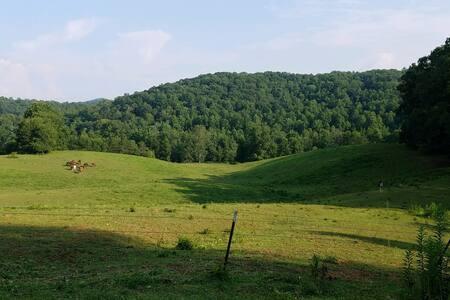 Little Cabin on The Hill - Blue Ridge, GA