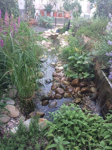 Schönes Appartement im Garten. - Oppenheim - Apartment