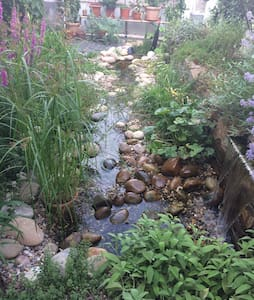 Schönes Appartement im Garten. - Oppenheim - 公寓