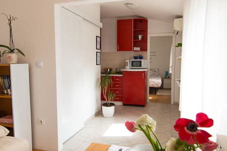 Cosy 2BD apt in centar Zagreb with free parking - Zagreb
