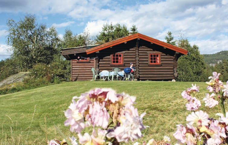 Holiday cottage with 2 bedrooms on 50m² in Åmli