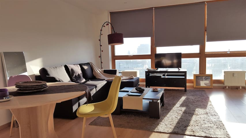 Nice appartment at the city center Lille/station - Lille - Pis