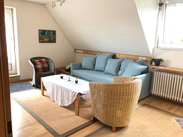 Wohnzimmer mit Schlafsofa als optionales Schlafzimmer für 2 Personen nutzbar   Living Room with sleeping couch for 2 people