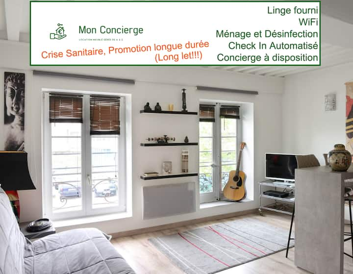 Bel appartement côté Rhône