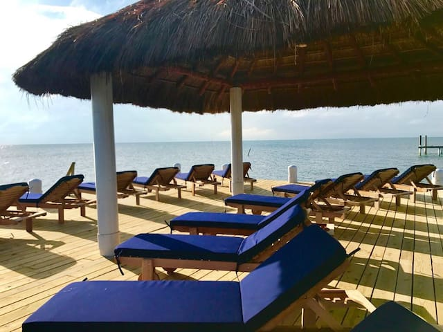 GOLD STANDARD Oceanfront #4 with private dock/beach, pool, wifi, AC