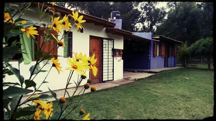"""Casa """"Ventanas al Bosque"""" en Parque Bristol"""