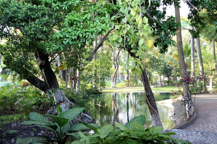 Fin descansando en  Albercas naturales y jardines - Chiconcuac - Byt