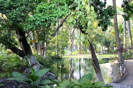 Fin descansando en  Albercas naturales y jardines - Chiconcuac