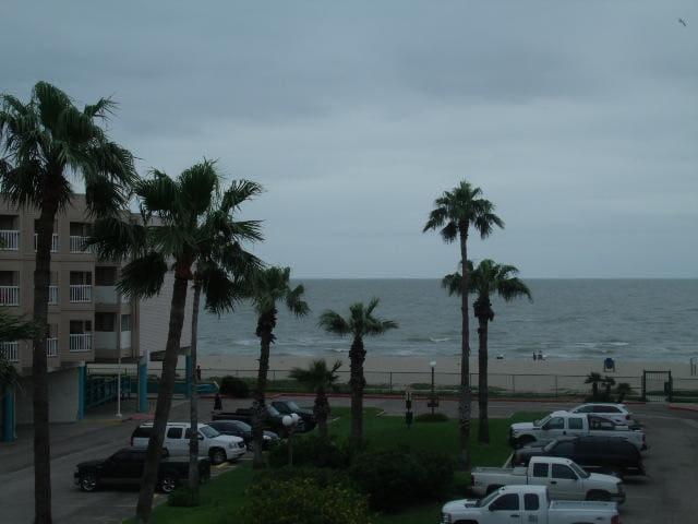 Beautiful Corpus Christi Beach Condo 1239 - Corpus Christi