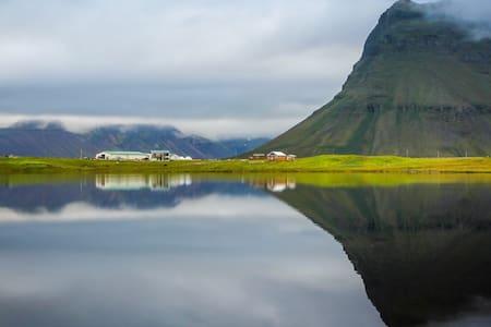 Berg 2 Horse farm life - Grundarfjörður
