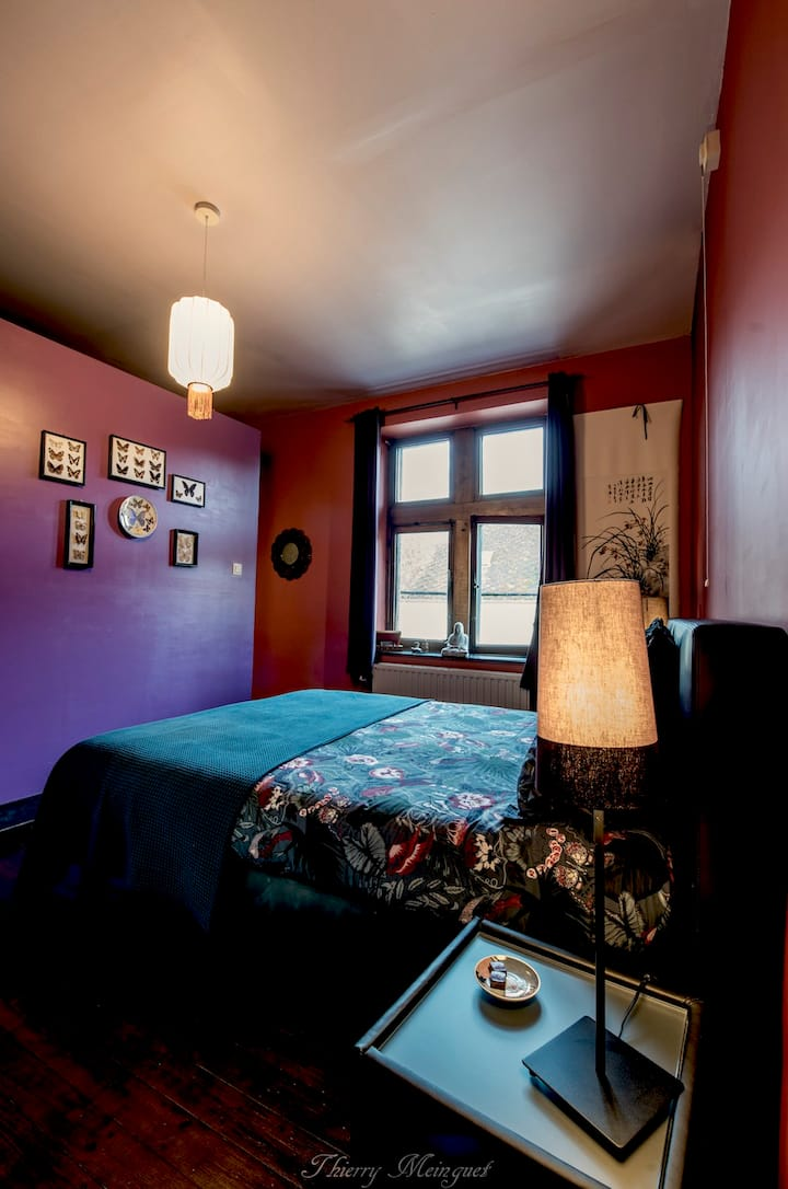 B&B insolite & escape room / chambre Prof Violet