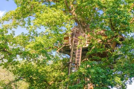 Cabane Evasion pour 2 personnes - Chassey-lès-Montbozon - Dům na stromě
