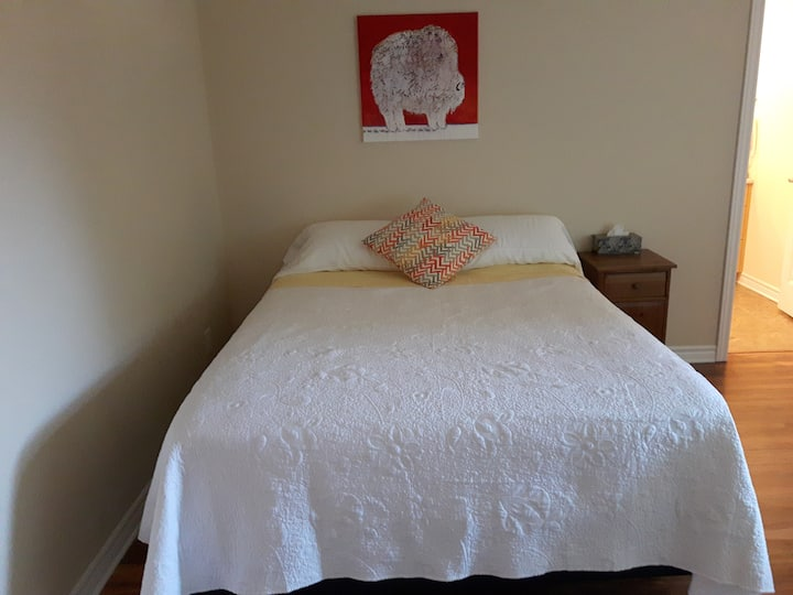 Clean New Room with Private Bath, Queen bed plus