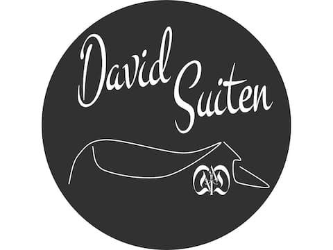 DAVID SUITEN FANNINGBERG - luksus, med spa
