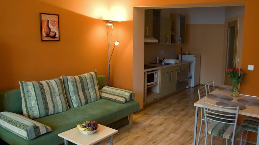 Apartmán 4+1 - Penzion Rozálie