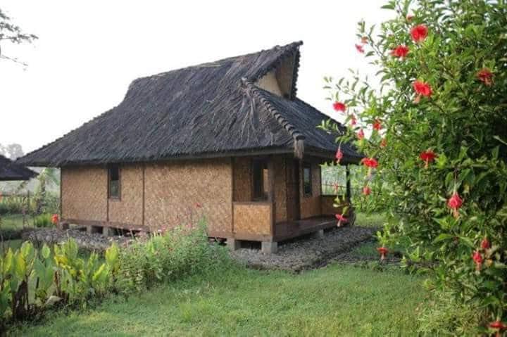 Culture village