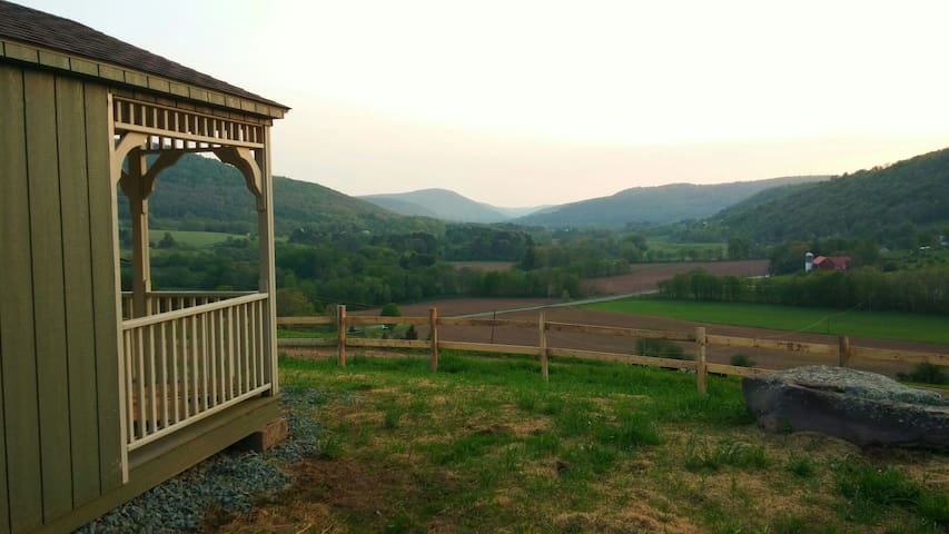 Valley View Cabin- On Operating Dairy Farm - Bloomville - Cabana