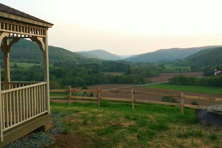 Valley View Cabin- On Operating Dairy Farm - Bloomville