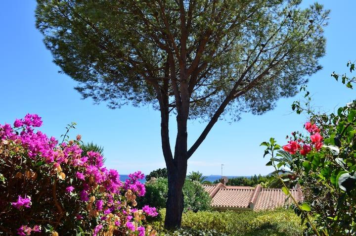 Villa a 50 m dalla spiaggia di Costa rey