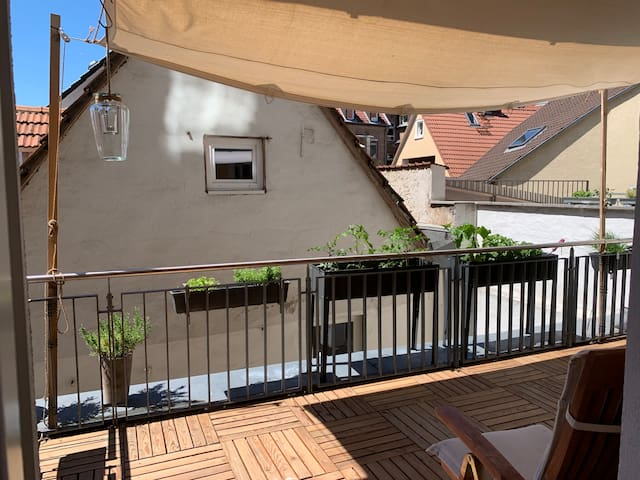 Beautiful apartment in the heart of Heidelberg