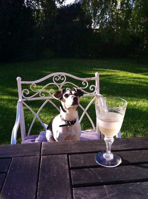 A chilled glass of white wine in the garden helps one to unwind.