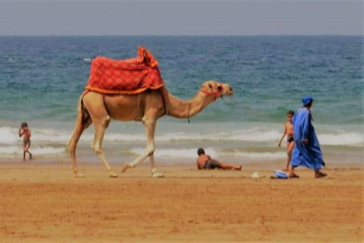 Jet Sakane Jet Vacance -Agadir