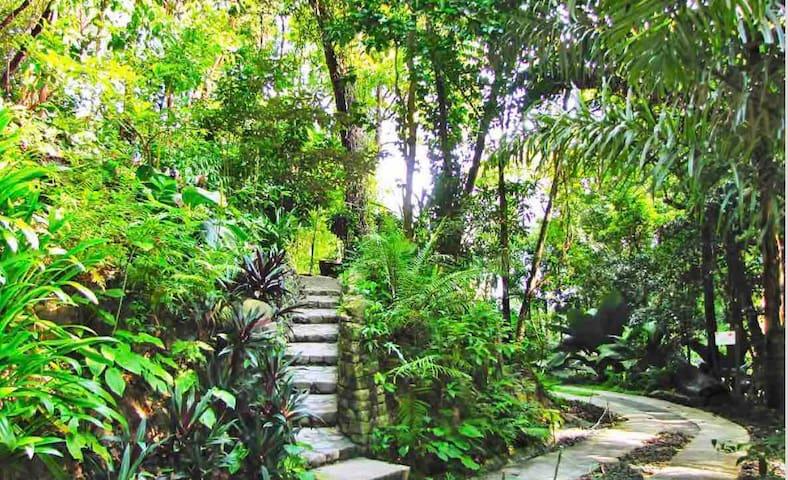 Spice garden unique landscapes