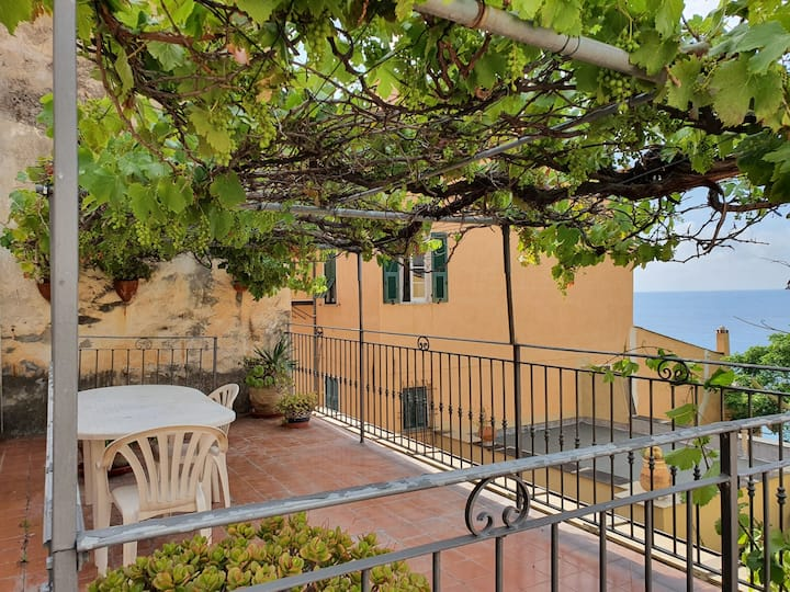 Two rooms with sea view terrace (VECCHIO BORGO)