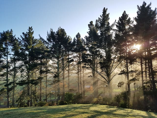 Auckland Farmstay (Whitford) - Auckland