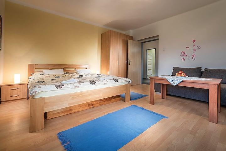 Dom Jasná - Beautiful apartament with 2 rooms