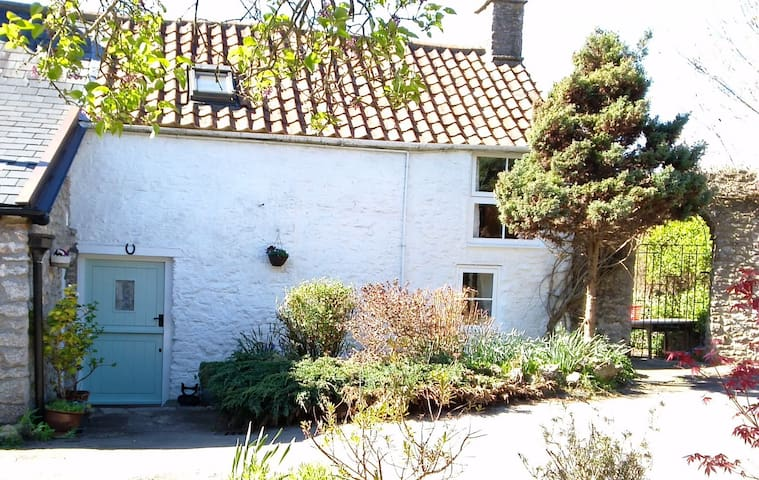 The Dairy cottage. Westbury-sub-Mendip.