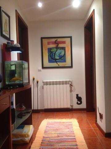 rufravet apartment