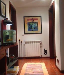 Rufravet apartment - Guarda