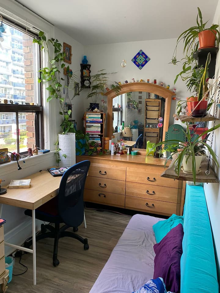 Small well lit room with lots of plants