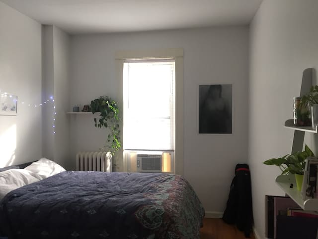 Room for sublet in lovely Ridgewood!