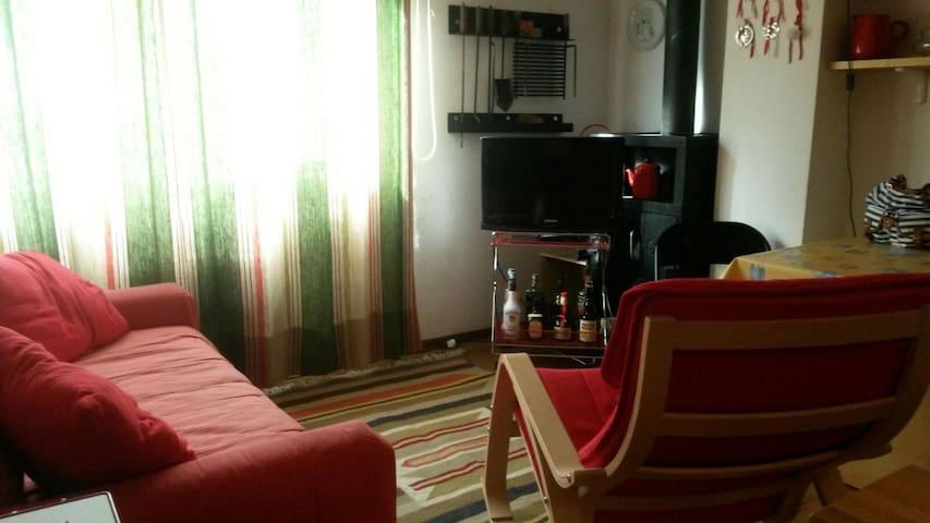 Appartamento ideale per sciatori e vacanze estive - Faidello - Huoneisto