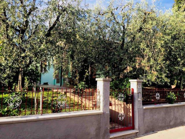 Olive's residence