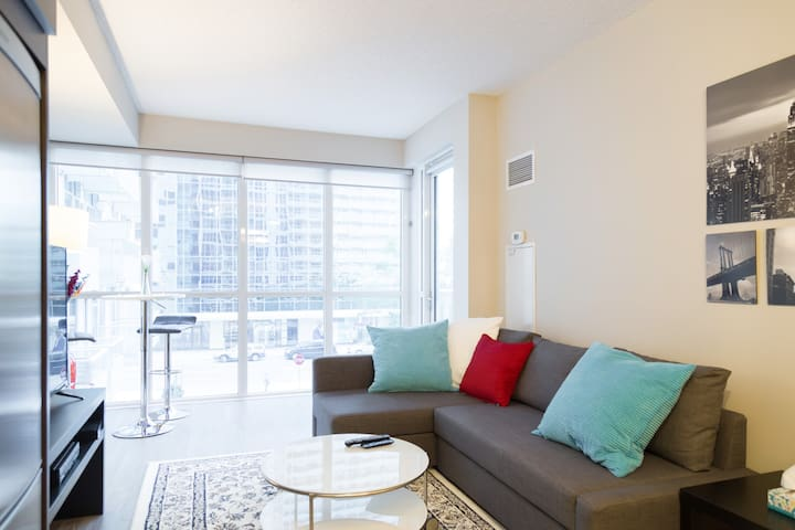 Luxury 1BR Condo In Heart Of Toronto