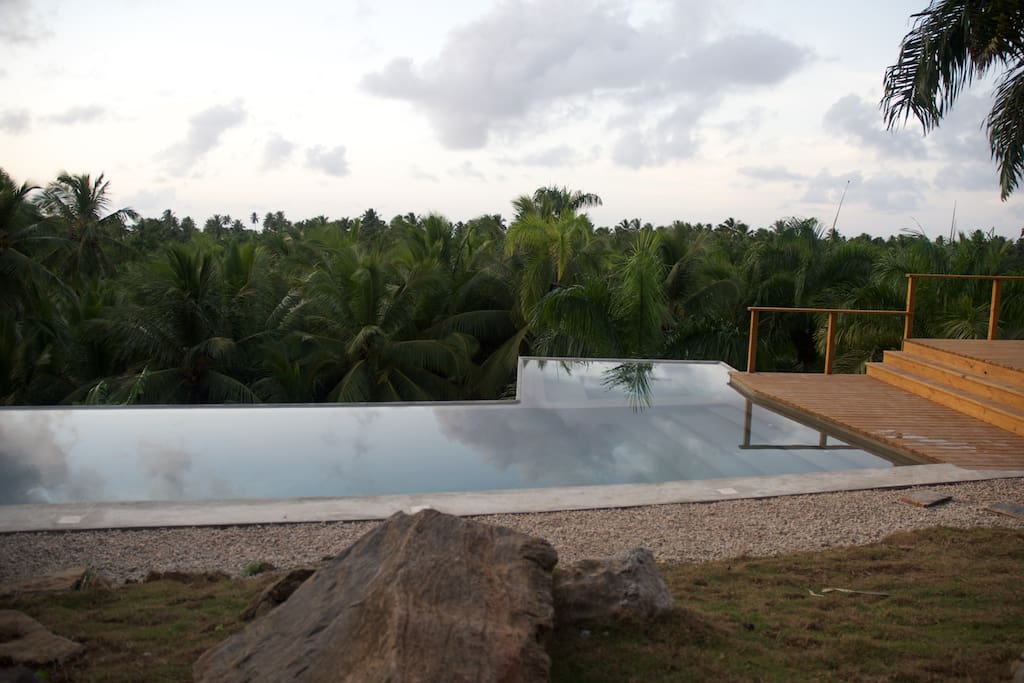 Private villa submerged in coconut tree forest.