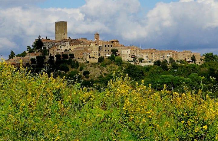 Casa Marsili