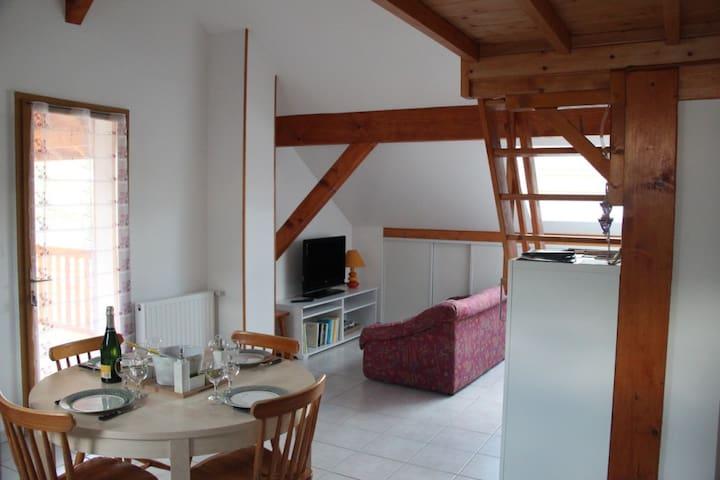 Charmant meublé de 50 m² + jardin + terrasse 12 m² - Laval - Leilighet