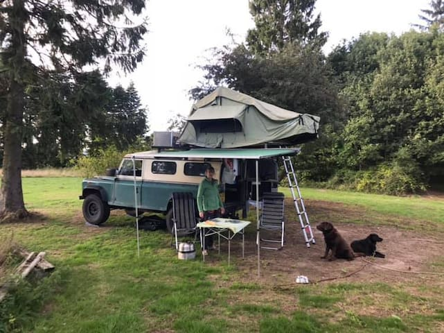 Primitive stay in natural surroundings